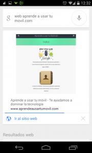 Pantallazo OK Google web 1
